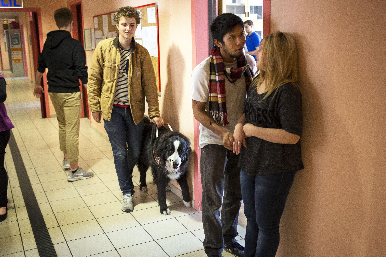 Jeunes étudiants dans le couloir de l'IFMK DV en train de discuter. Au second plan, Marc, non voyant depuis l'âge de 6 ans, avec son chien guide.
